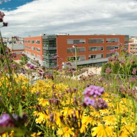 CESP Summer University 2021